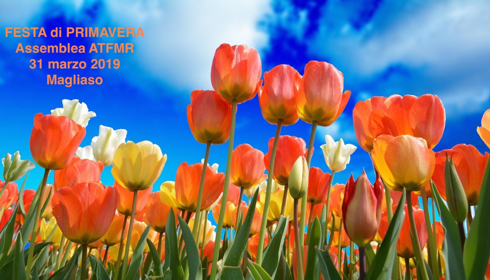 Festa di primavera ATFMR