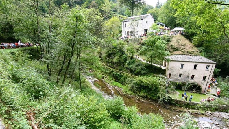 Festa del Mulino di Bruzella