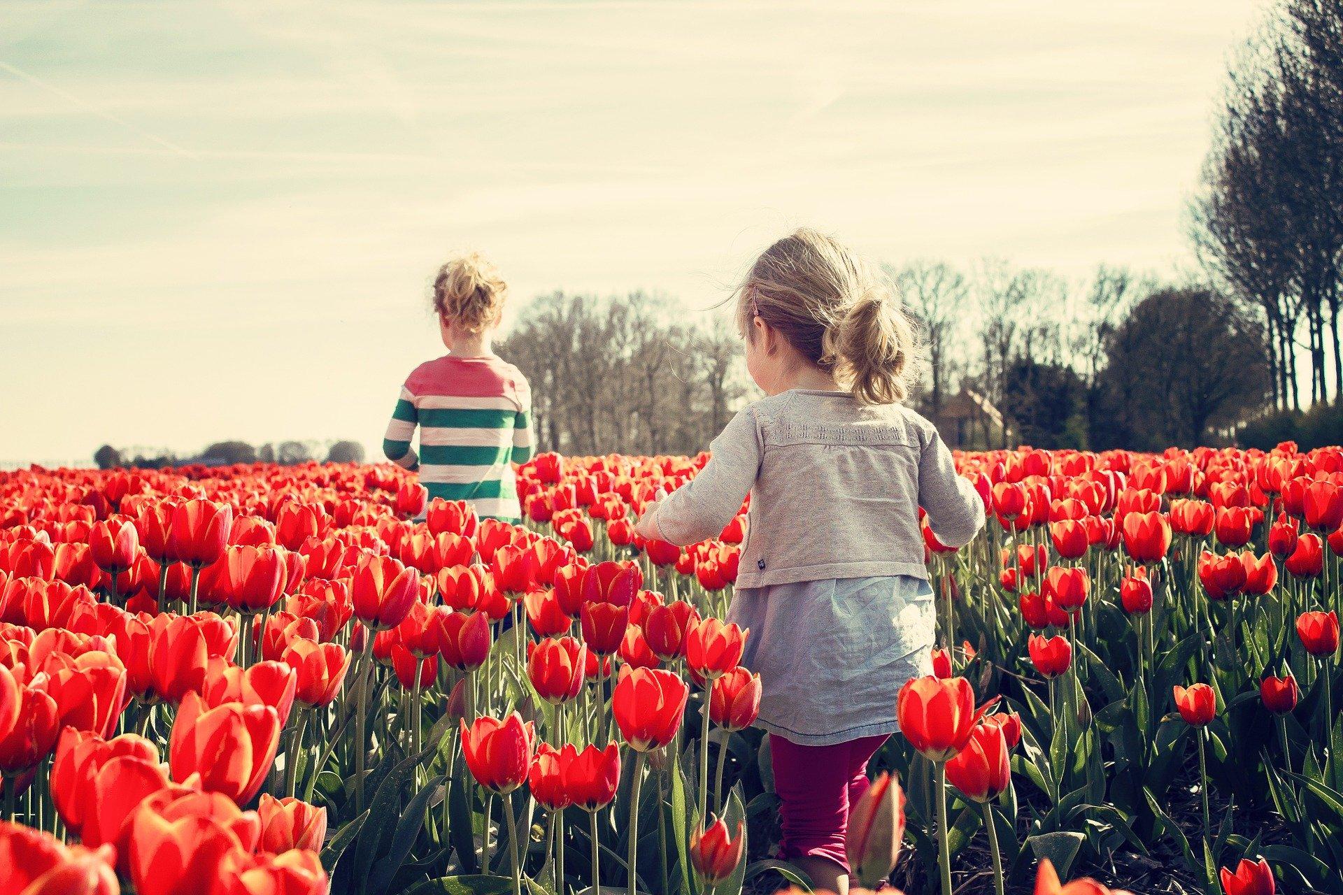 Festa di primavera + Assemblea Atfmr